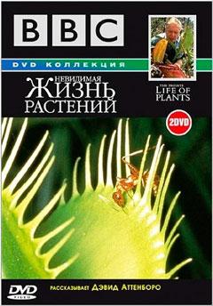 BBC: Невидимая жизнь растений (BBC: The Private Life of Plants). Серия 1 - Растения путешественники