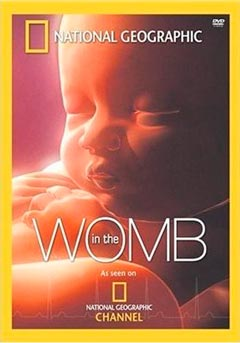 Жизнь до рождения: в утробе матери (In the womb). Человек.